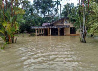 BPBA: 4 kabupaten/kota di Aceh terdampak hujan lebat