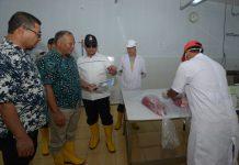 Plt Gubernur Aceh: Pengolahan tuna harus sering disosialisasikan