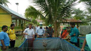 Mahasiswa KKM Gampong Uteun Gathom panen ikan lele
