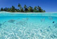 Sabang, menuju destinasi wisata bahari Internasional