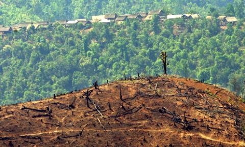Banjir bandang di Agara, Gubernur Aceh: Hentikan illegal logging