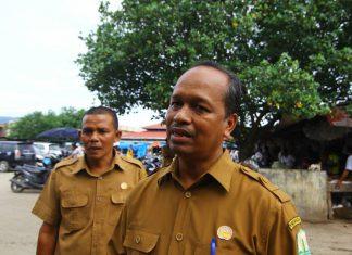 Di Aceh, stok sapi jelang Meugang cukup