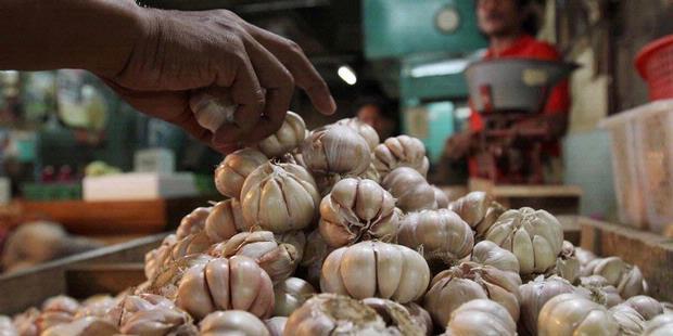 Mendag siap banjiri jumlah bawang putih jika ada yang permainkan harga