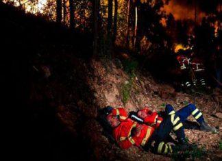 Kebakaran hutan yang dahsyat terjadi di Portugal, 62 orang tewas