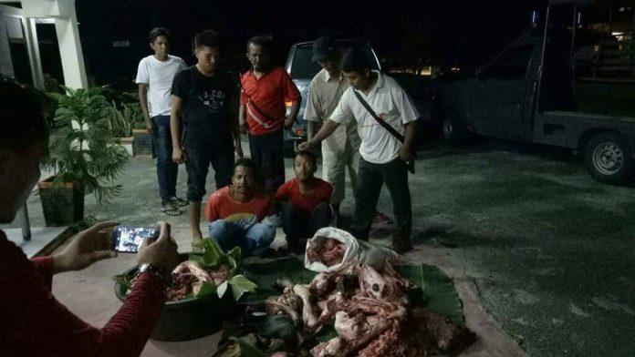 Maling sapi di Langsa Barat ditangkap polisi