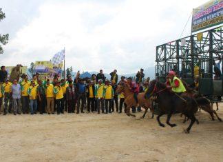 HUT Bener Meriah, 4 kabupaten di Aceh ikut lomba pacuan kuda