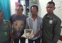 Polisi bekuk nelayan pencuri 59 telur penyu di Aceh Singkil