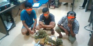 Diduga pengedar ganja, tukang bangunan ditangkap Polres Langsa