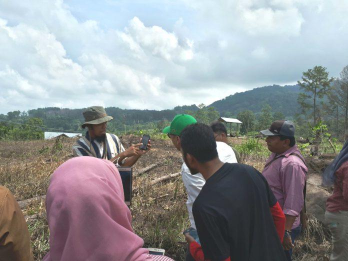 Pemerintah Aceh pelajari Forest Watcher untuk deteksi kerusakan hutan