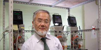 Ilmuwan Jepang: Berpuasa di Bulan Ramadhan Membantu Memerangi Kanker